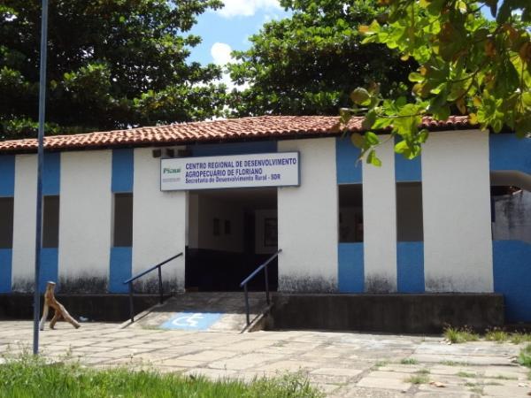 ADAPI divulga nova data de vacinação contra Aftosa.(Imagem:FlorianoNews)
