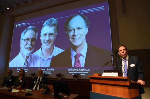 William Kaelin e Gregg Semenza, dos EUA, e Peter Ratcliffe, do Reino Unido, ganham o Prêmio Nobel de Medicina.(Imagem:Jonathan Nackstrand / AFP)