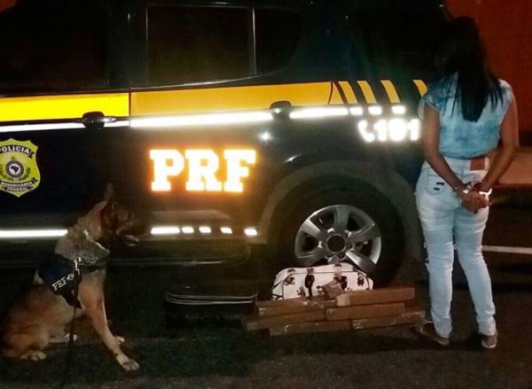 Cão farejador encontra 8kg de maconha com passageira de ônibus.(Imagem:PRF)