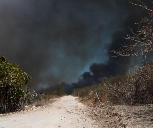 Incêndio no assentamento Santa Clara, em Canto do Buriti (PI).(Imagem:Arquivo Pessoal/Ricardo Pereira)