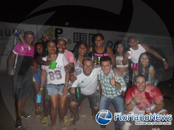 Bloco Farinhalcool(Imagem:FlorianoNews)