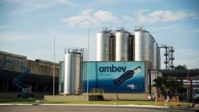 Ambev tem 300 vagas para Programas de Estágio e Trainee; inscrições vão até esta terça-feira (14)(Imagem:Reprodução)