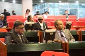 Plenário aprova Frente Parlamentar e mais dez matérias.(Imagem:Alepi)