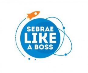 Sebrae abre inscrição para projeto de aceleração de startups em Teresina.(Imagem:Sebrae)