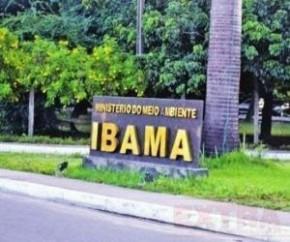 Concurso: Ibama deve abrir 1.888 vagas e salário até R$ 7,7 mil.(Imagem:CidadeVerde.com)