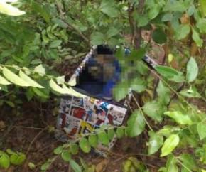 O corpo encontrado dentro de um caixote na manhã desta terça-feira (9) é de uma mulher de aproximadamente 40 anos, segundo informações do Departamento de Homicídios e Proteção à Pe(Imagem:Reprodução)