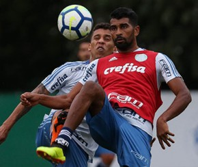 Palmeiras recebe o Flamengo em casa e tenta diminuir vantagem.(Imagem:Cesar Greco)