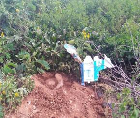 Preso suspeito de ocultar cadáver de auxiliar de serviços gerais.(Imagem:Cidadeverde.com)