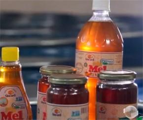 Produção de mel do PI cresce e gera quase R$ 45 milhões, aponta IBGE.(Imagem:Divulgação)