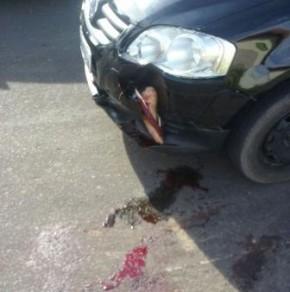 Jovem tem pé amputado em acidente em Barão de Grajaú.(Imagem:Reprodução/ WhatsApp)