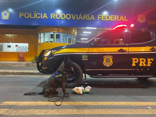 PRF de Floriano apreende drogas avaliadas em R$50 mil(Imagem:PRF)