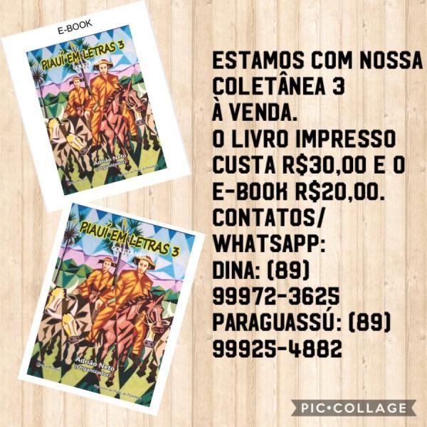 Piauí em Letras 3(Imagem:Divulgação)