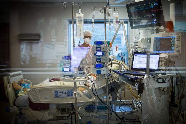 Busca por ajuda médica entre pessoas com sintomas da Covid-19 reduz no Piauí, diz IBGE(Imagem:Reprodução)